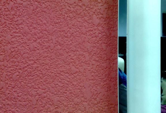 Вам уже приходилось слышать о декоративном покрытии короед?