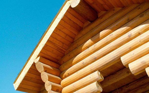 как защитить древесину от гниения, плесени и насекомых