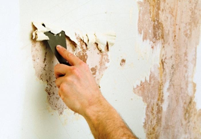 Умелый демонтаж краски со стен — залог качественного ремонта!